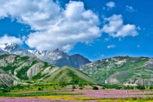 madu-asli-kyrgyzstan-olive-house-2